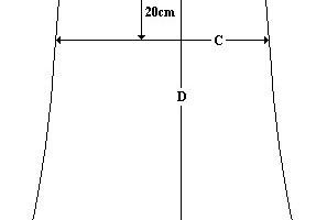 Skirt Measurement