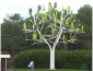 Wind-tree-view