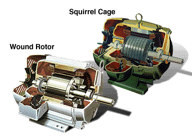 Wound rotor and Squirrel cage
